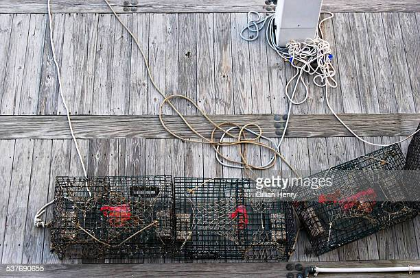 Lobster Traps on Wooden Dock