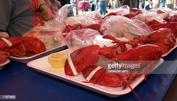 Lobster trays sit ready to be served at the Port Of Los Angeles Lobster Festival October 5 2001 in San Pedro CA