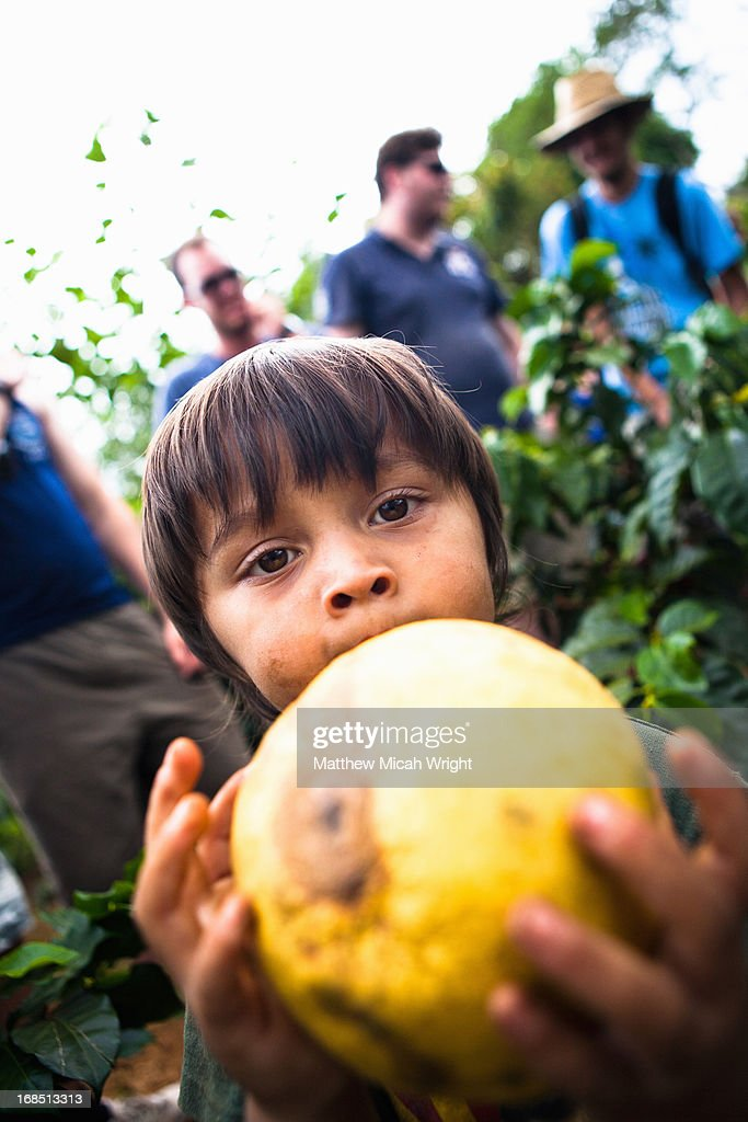 A local child playing in the coffee fields : Stock Photo