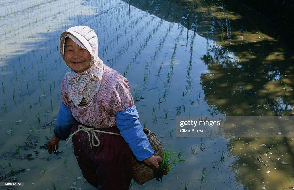 A local farmer from Muroto-misaki (or cape) takes a break from planting rice.