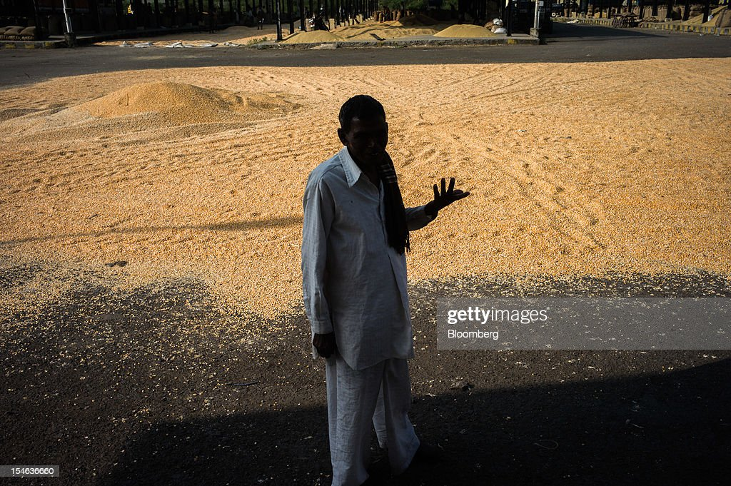 A local farmer stands next to corn grains spread out to dry in the sun at a grain market in the district of Burhanpur, Madhya Pradesh, India, on Friday, Oct. 19, 2012. India is Asia's biggest grower of corn after China. Photographer: Sanjit Das/Bloomberg via Getty Images