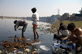 Local Indian residents in a New Delhi slum at Nigambodh Ghat bathe and wash clothes in heavily polluted water along the Yamuna River February 10 2008...