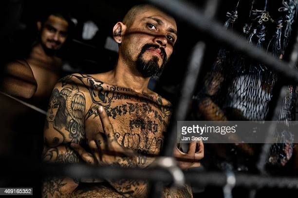 A local leader of the Mara Salvatrucha gang shows a hand sign that represents his gang in a cell at a detention center on February 20 2014 in San...