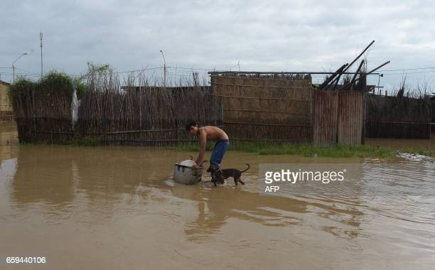 TOPSHOT A local resident wades through floodwater with his dog after heavy rains in Piura northern Peru on March 28 2017 More than 50000 people have...