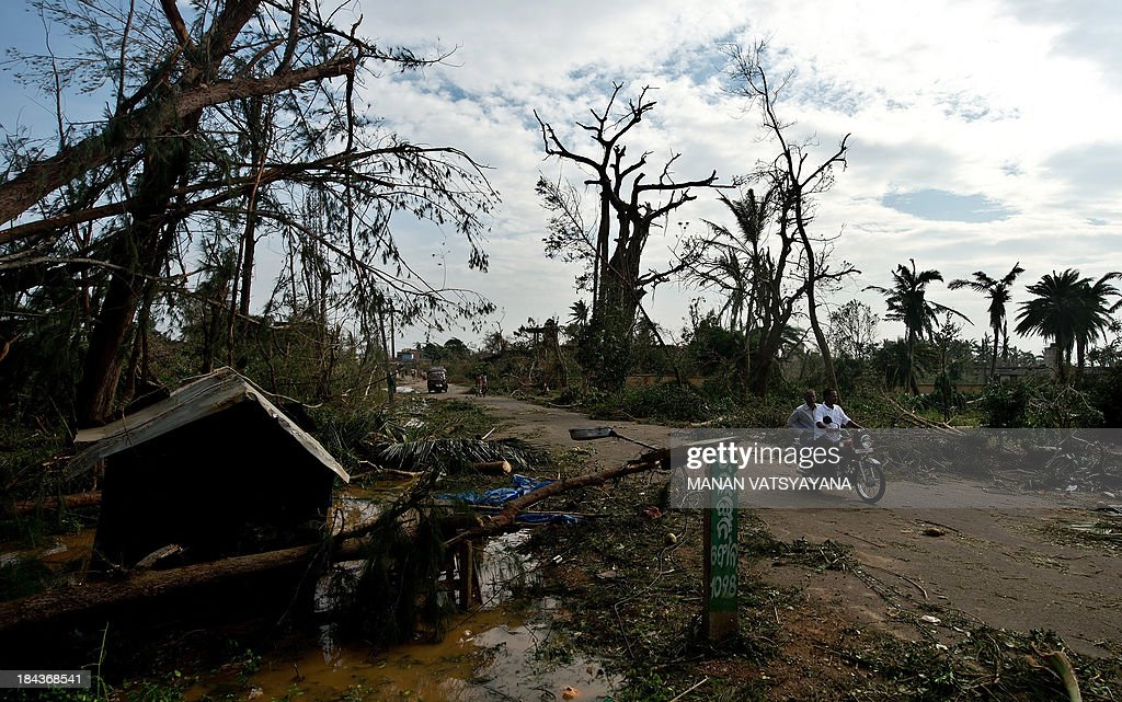 Local residents ride a motorcycle past fallen trees due to the overnight cyclone in Gopalpur on October 13, 2013. Cyclone Phailin left a trail of destruction along India's east coast and up to seven people dead after the biggest evacuation in the country's history helped minimise casualties.