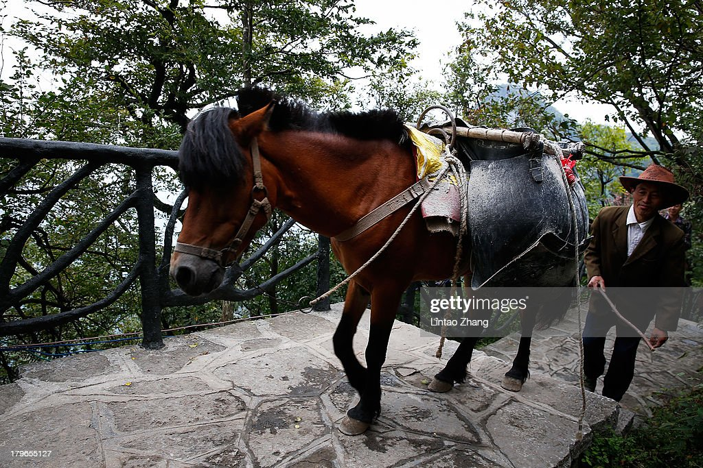 Local residents use horses to carry goods in the Tianmen Mountains on September 1, 2013 in Zhangjiajie, China. Zhangjiajie National Forest park is a popular tourist destination in the Hunan province, home to striking sandstone and quartz cliffs and famously known for renaming a peak after the mountain formations inspired the fictional world of 'Pandora' in James Cameron's film, 'Avatar'.