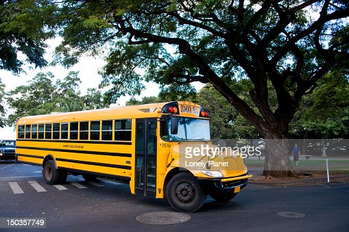Local school bus. : Stock Photo