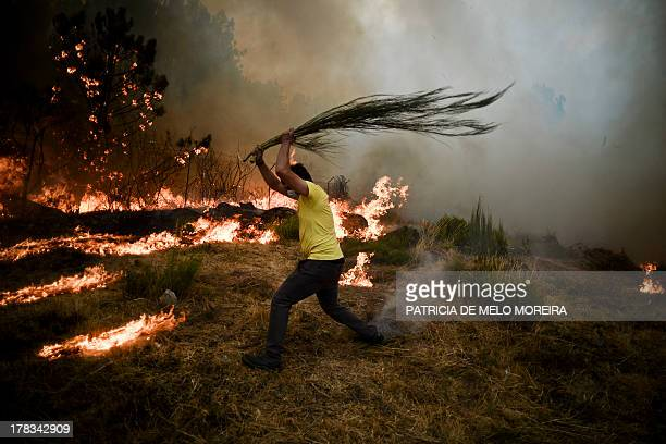 A local tries to extinguish a wildfire in Caramulo central Portugal on August 29 2013 Five Portuguese mountain villages were evacuated overnight as...