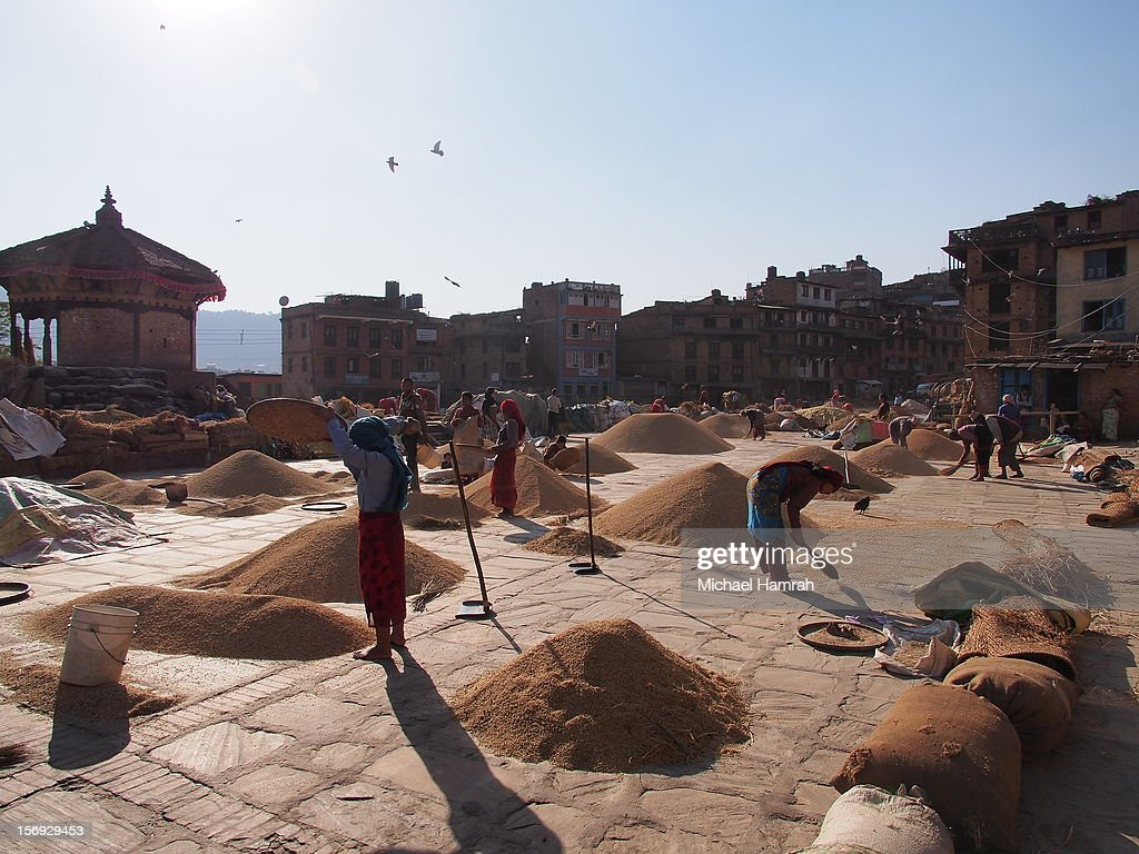 Local villagers dry rice in public areas in Bhaktapur, Nepal