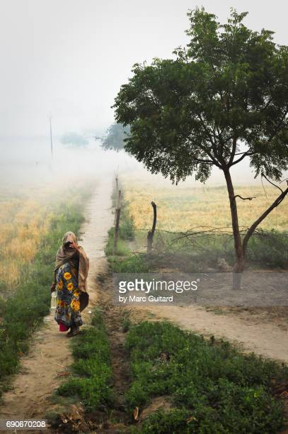 Local woman on a misty farm path, Agra, Uttar Pradesh, India