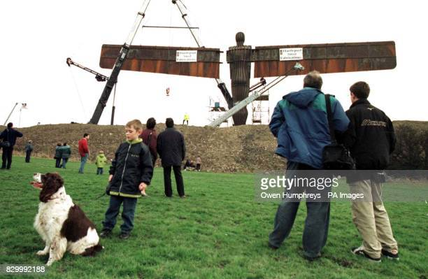 Locals gather to watch the wings as they are attached to the controversial new north of England landmark a gigantic steel sculpture entitled 'Angel...