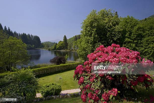 Loch Ard Trossachs National Park Stirling district Scotland United Kingdom