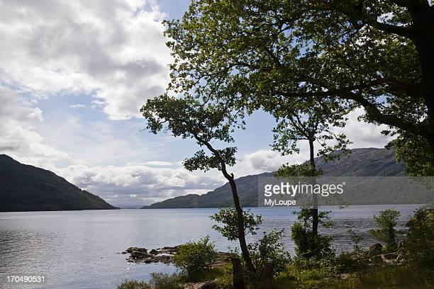 Loch Lomond near Tarbet Loch Lomond and The Trossachs National Park Argyll and Bute Scotland United Kingdom