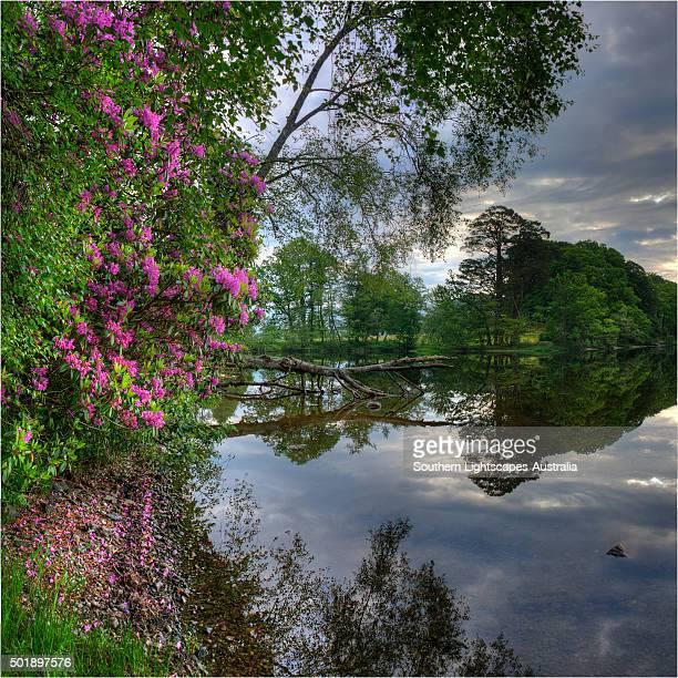 Loch Lomond, The Trossachs, Highlands of Scotland.