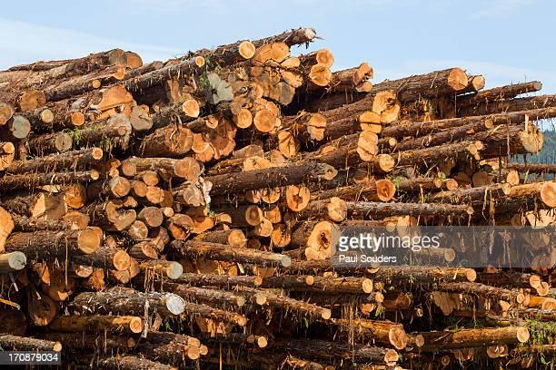 Log Barge, BC, Canada
