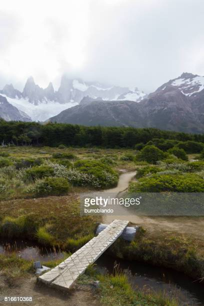 A log bridge on a hiking trail through the patagonian andes in Argentinian Patagonia, South America