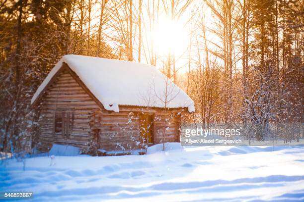 Log cabin in clearing in snowy forest