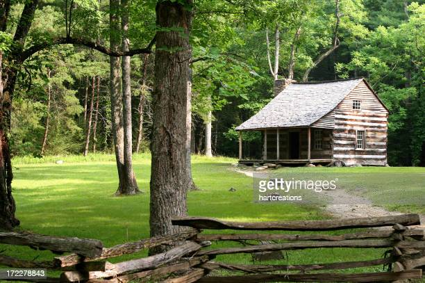 Log cabin in grassed clearing with forest path and fence