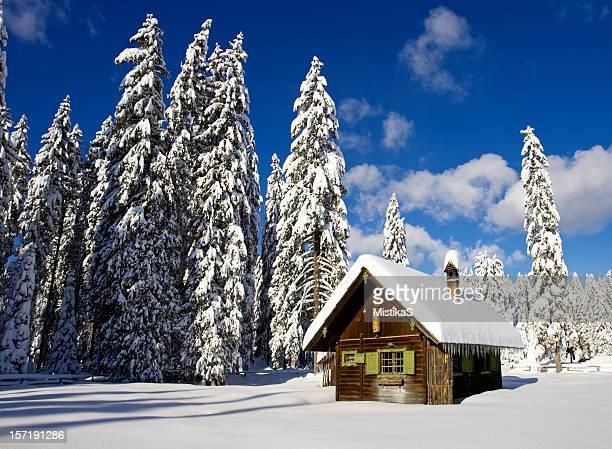 Log-Hütte im Winter