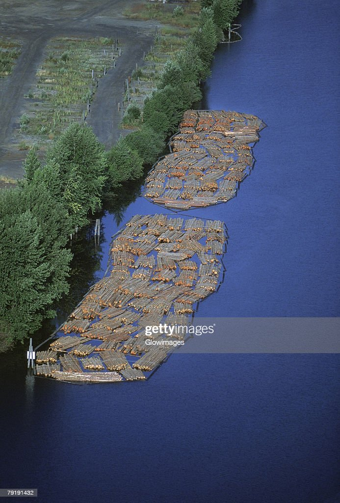 Log rafts flowing to a sawmill, Idaho : Foto de stock