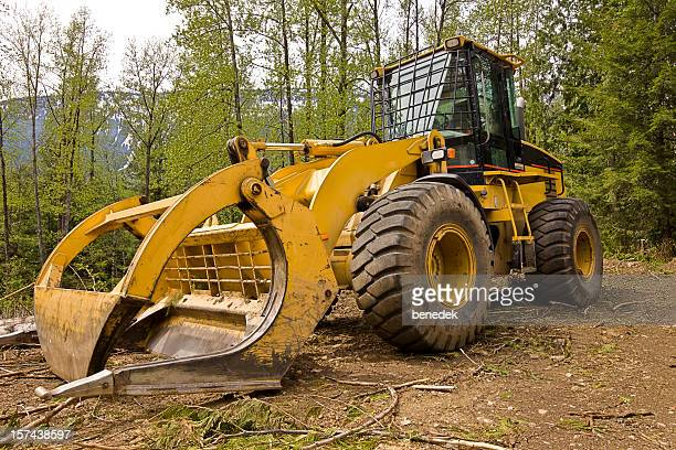 Log Skidder in forest
