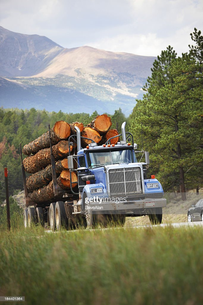 Log Truck Colorado : Stock Photo