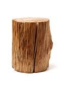 Log Wood isolated on a white background