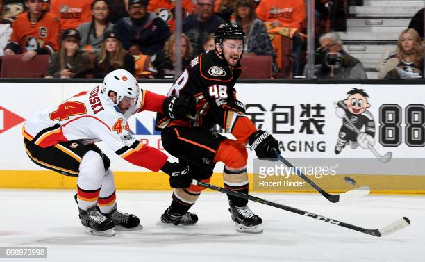 Logan Shaw of the Anaheim Ducks battles for the puck against Matt Bartkowski of the Calgary Flames in Game Two of the Western Conference First Round...