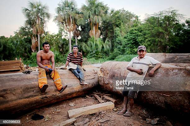 Loggers pose with felled trees in a deforested section along the Interoceanic Highway in the Amazon lowlands on November 16 2013 in Madre de Dios...