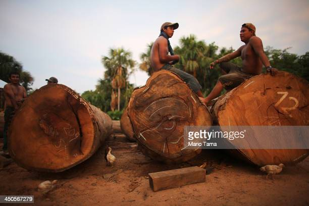 Loggers sit on felled trees in a deforested section along the Interoceanic Highway in the Amazon lowlands on November 16 2013 in Madre de Dios region...