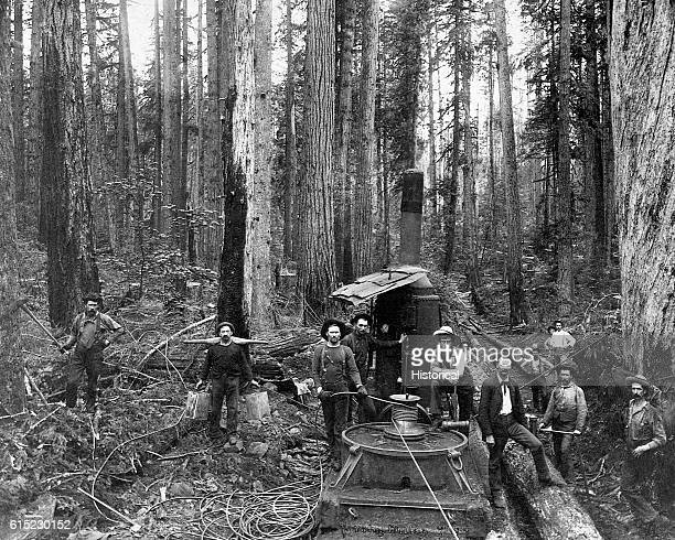 A logging crew stands among an old growth stand of Douglas fir with a donkey engine used for skidding logs