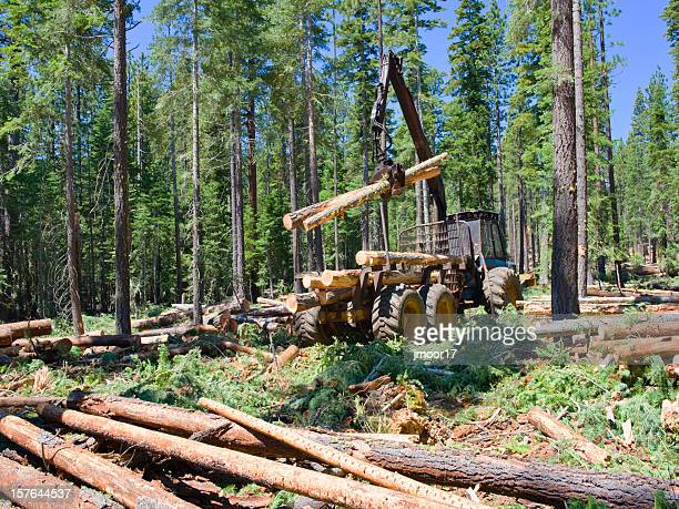 Logging Loader