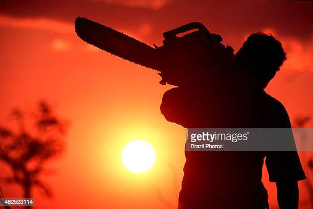 Logging worker carries his chainsaw at sunset after a hard day of labor Amazon rainforest deforestation