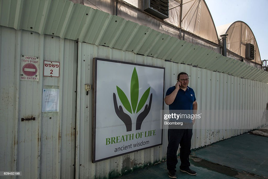 A logo sits on display on the security fence surrounding the cannabis facility operated by Breath of Life (B.O.L.), in Kfar Pines, Israel, on Wednesday, Sept. 21, 2016. Breath of Life is one of eight licensed firms seeking to position Israel as a global hub for medical cannabis research. Photographer: Rina Castelnuovo/Bloomberg via Getty Images