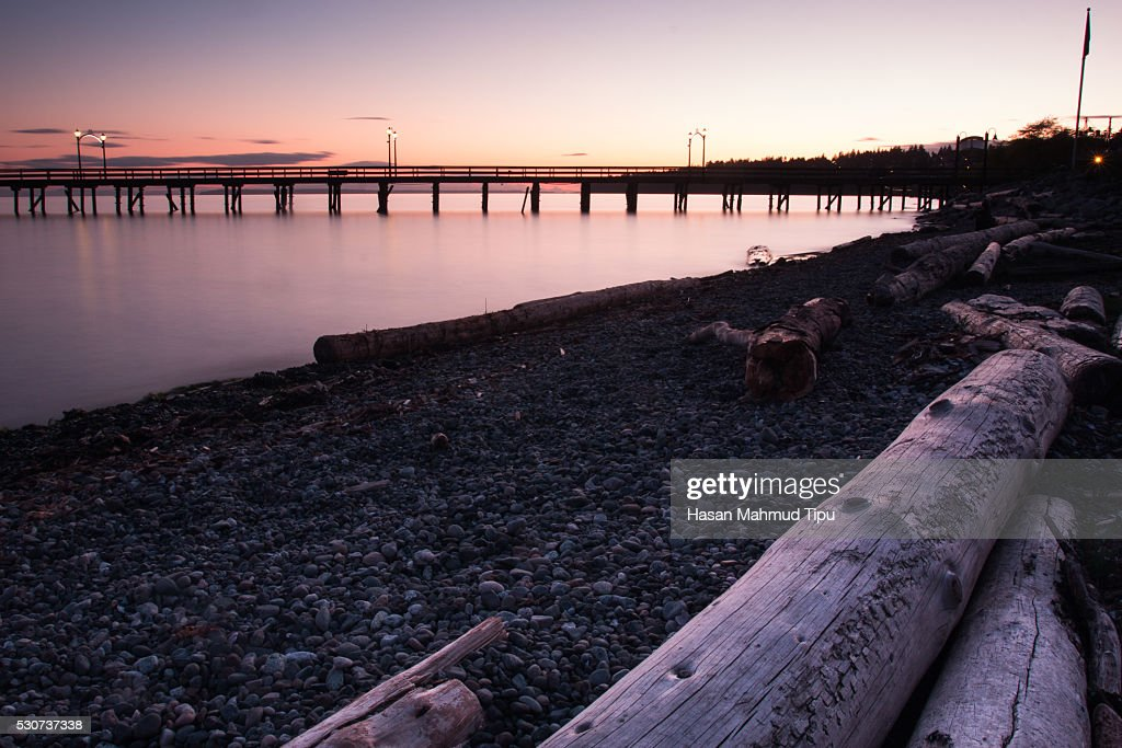Logs and Jetty