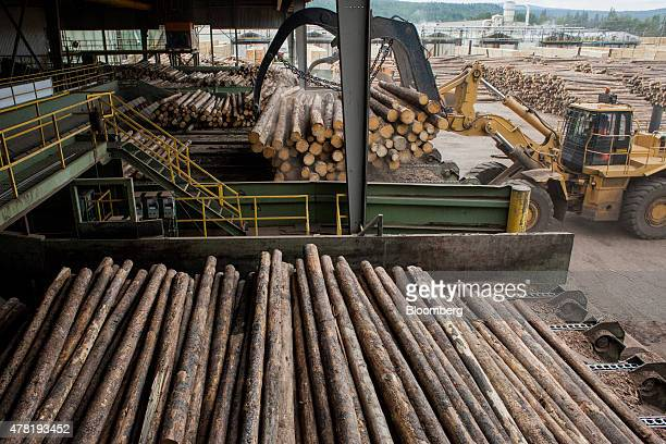 Logs are loaded onto a machine for bark removal at the West Fraser Timber Co sawmill in Quesnel British Columbia Canada on Friday June 5 2015 Since...