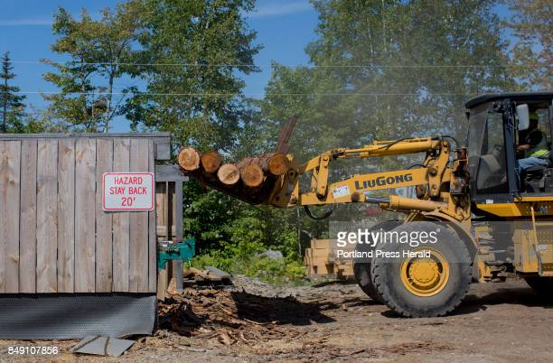 Logs are set onto the sawmill conveyer belt at Treeline Inc to be cut into lumber The company which is family run was one of the companies that...