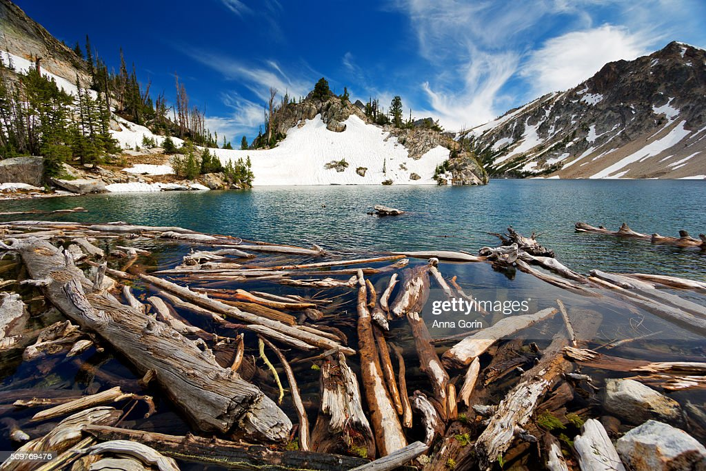 Logs at edge of Sawtooth Lake in summer, surrounded by snowy mountains, Stanley, Idaho