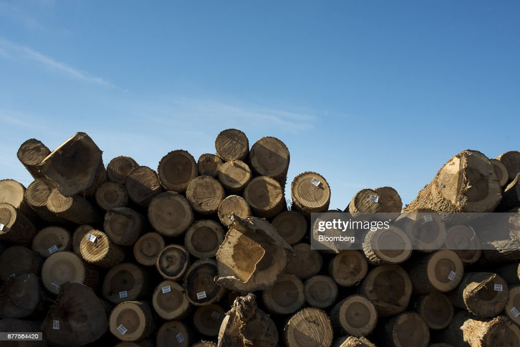 Operations At The Cyblair Sawmill As Lumber Prices Soar