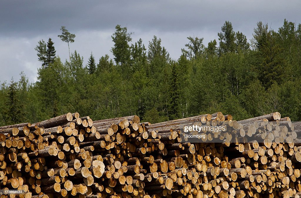 Logs sit stacked at the Dunkley Lumber Ltd. sawmill in Prince George, British Columbia, Canada, on Thursday, July 11, 2013. West Fraser Timber Co., the largest lumber producer in North America, had a sustainable rise in price, demand volatility, and profits within the past year. Photographer: Ben Nelms/Bloomberg via Getty Images