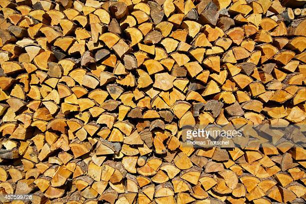 Logs stacked on a wall to dry on July 17 in Buecheloh Germany