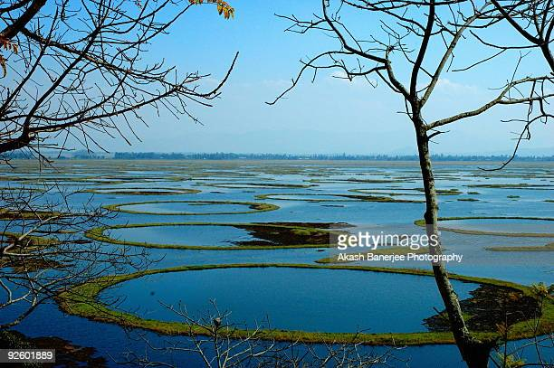 Lok Tak Lake - Manipur India
