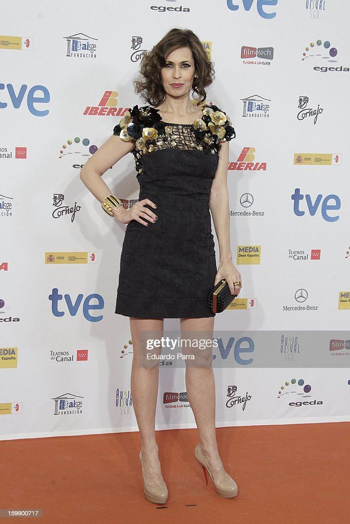 Lola Marceli attends Jose Maria Forque awards photocall at Canal theatre on January 22, 2013 in Madrid, Spain.
