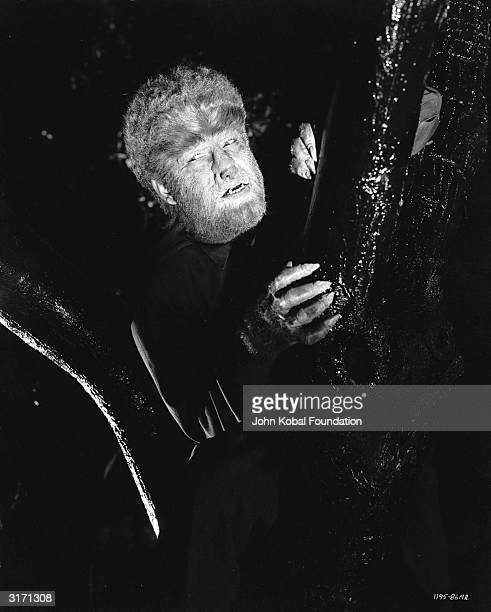 Lon Chaney Jnr stars as the lycanthropic Larry Talbot in 'The Wolf Man' directed by George Waggner