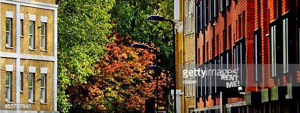 London street, fall