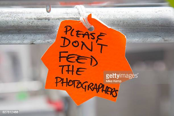 London UK Saturday 20th July 2013 A sign reads 'Please don't feed the photographers' A joke on a zoo sign refering to them as animals in the press...