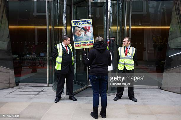A lone animal Rights protester stands outside the offices of the French Axa Insurance company condemning the controversial animaltesting laboratory...