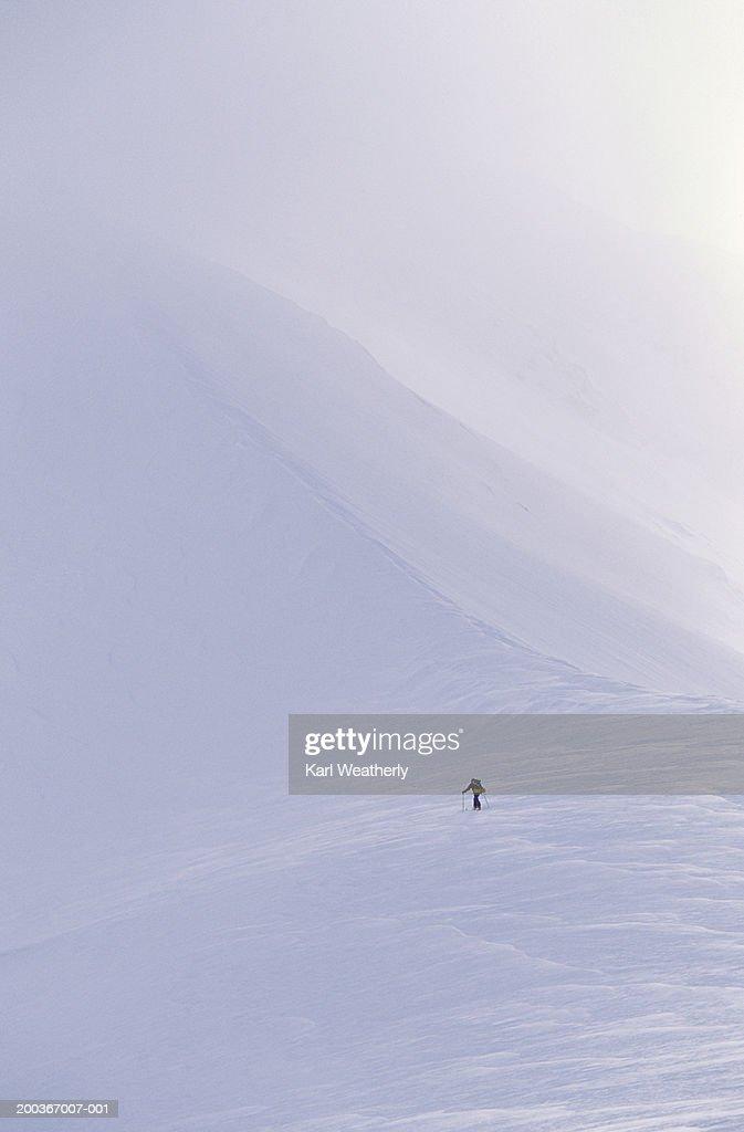 Lone cross country skier, Alaska, USA, British Columbia, Canadian border
