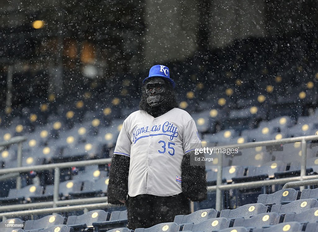 A lone fan stands in watches snow falls during a delay in play between the Tampa Bay Rays and the Kansas City Royals at Kauffman Stadium on May 2, 2013 in Kansas City, Missouri. The game was postponed due to weather.