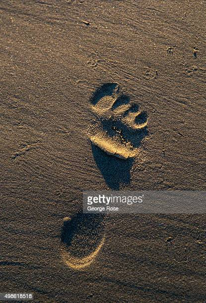 A lone footprint is found in the sand at Gaviota State Beach on November 15 in Gaviota California Because of its close proximity to Southern...